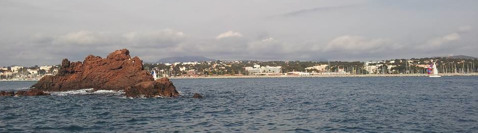 Lion de Mer - St Raphaël