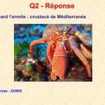 Reponse_Q02
