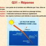 Reponse_Q31